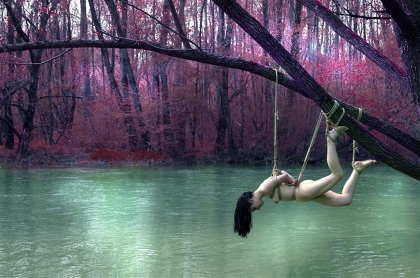 2009-Observing-the-stillness-of-Brenta-river